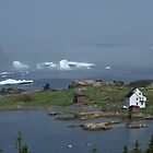 Scenic Newfoundland and Labrador by Jean Knowles
