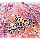 Postcards for the Reef 9: Shrimps with Attitude by MiMiDesigns