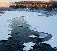 Swedish Lapland by Bodil Kristine  Fagerthun