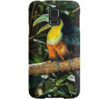 Toucan No. 3 of Iguazu Samsung Galaxy Case/Skin