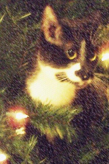 Tuxedo Cat by Terri Chandler
