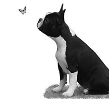 Maddi & butterfly by Cazzie Cathcart