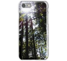 Amongst the Trees iPhone Case/Skin