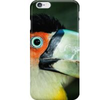 Toucan No. 4 of Iguazu iPhone Case/Skin