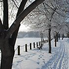 Cold Winter Day by Roxanne Persson