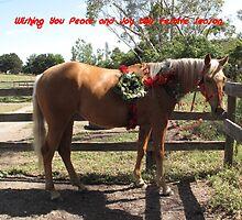 Skyhorse Christmas Parade Pony Tribute by skyhorse