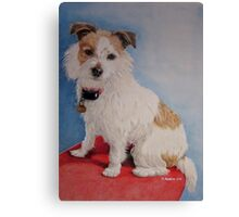 Peppa the rough coat terrier Canvas Print