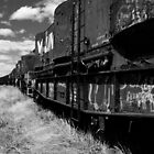 the tracks - black and white style by Simon Penrose