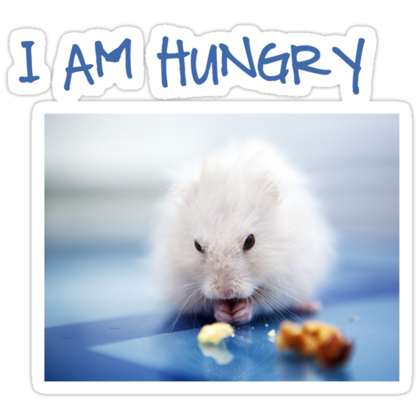 I am hungry by Carol Yepes