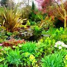 spring garden by cynthiab