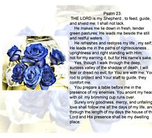 Psalm 23 by Shoshonan