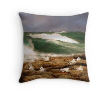 The (almost) vanishing seagull Throw Pillow