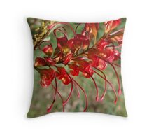 Red Grevillea Throw Pillow