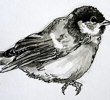 Coal Tit by Jessica Lister