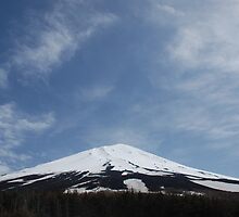 Mount Fuji from the 5th Station  by jojobob