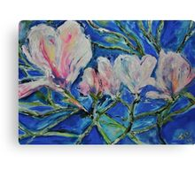 Magnolias at the end of Winter Canvas Print