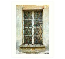 Elaborate window Art Print