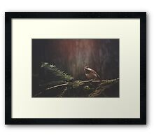 Chickadee in the Redwoods Framed Print
