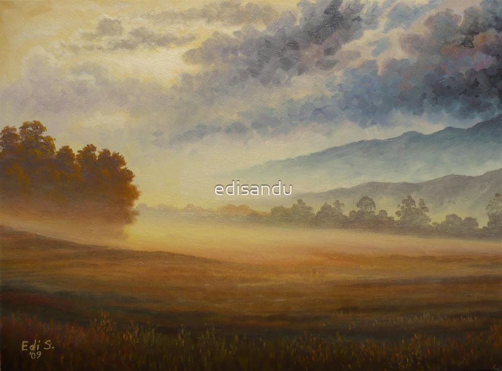 misty morning by edisandu