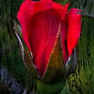 For You My Love My Hart by michaelasamples