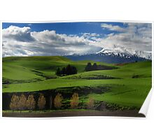 New Zealand Pastoral Poster