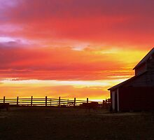 Sunrise on the Rancho by angellynnhill