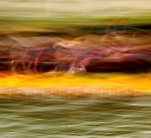 Dragon Boat Race by Catherine Hadler