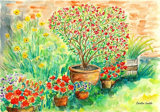 My Flourishing Oleander in Pink by Caroline  Lembke