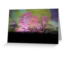 Orchid in evening sky. Greeting Card