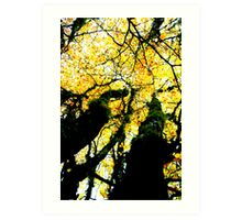 Golden Giants Art Print