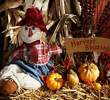 Harvest Blessings by JpPhotos