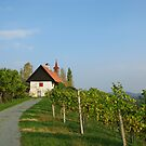 Styrian Wine Country by Christine Wilson