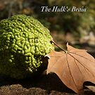 The Hulk's Brain by JpPhotos
