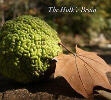 The Hulk's Brain by JpPhotos