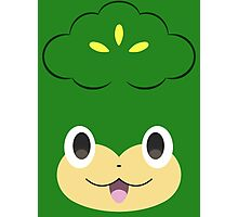 Pokemon - Pansage / Yanappu Photographic Print