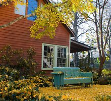 Cozy spot under the Gingko Tree by Bonnie T.  Barry
