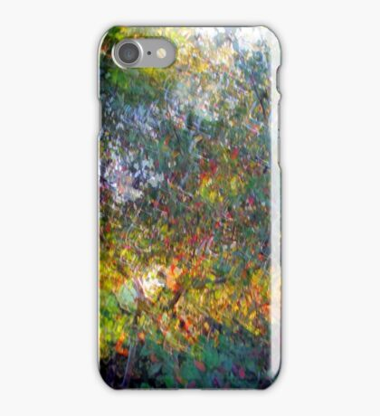 Ode to Monet iPhone Case/Skin