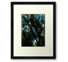 Tortuosa Framed Print