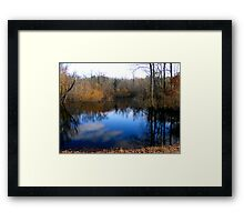 Willow Pond Framed Print