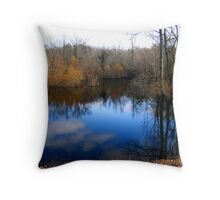 Willow Pond Throw Pillow