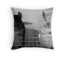 Cute Pair Throw Pillow
