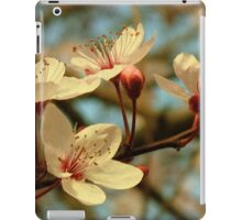 It's Spring iPad Case/Skin