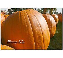 Plump Kin Photographic Print