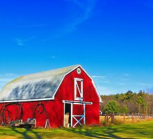 Another Red Barn by Evelina Kremsdorf