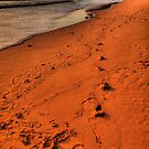 Foot Prints In The Sand - Newport Beach - The HDR Experience by Philip Johnson