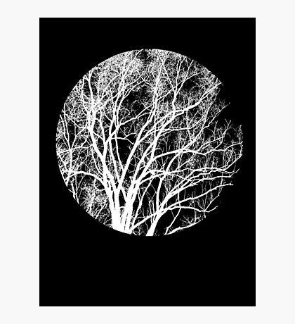 Nature into Me Photographic Print
