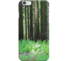 Fern And Trees Composition iPhone Case/Skin