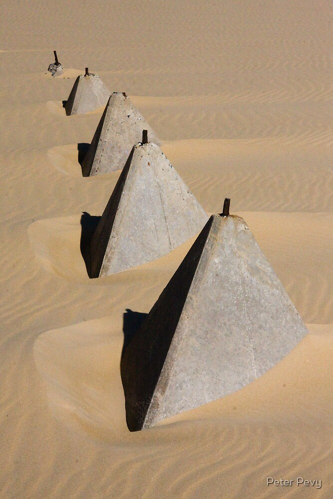 Trapped in the Sand by Peter Pevy