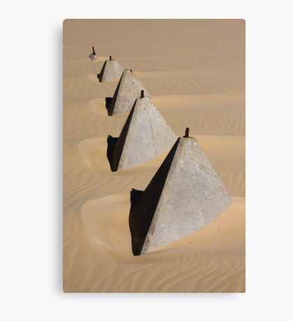 Trapped in the Sand Canvas Print