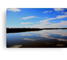 Mirror,Mirror Canvas Print